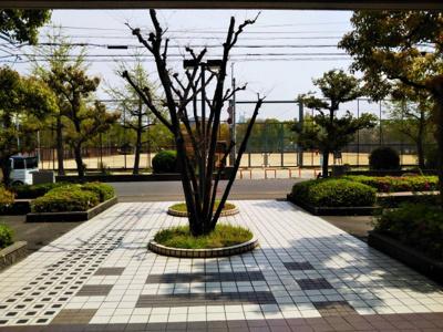 【展望】ルネ巽公園