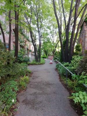 マンション名がリバーカントリーガーデンだけあって、周辺には緑がたくさんありました。 自然を感じられる素敵なエントランスですね♪