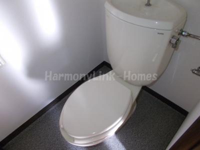 メゾンドルインのトイレ