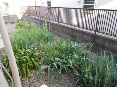 メゾンドルインの庭(ユリの花が植えてあります・綺麗です)☆