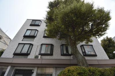 閑静な住宅街に佇む低層高級マンションです