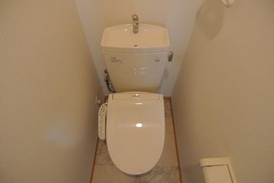 【トイレ】スタジオaptウッドハウス