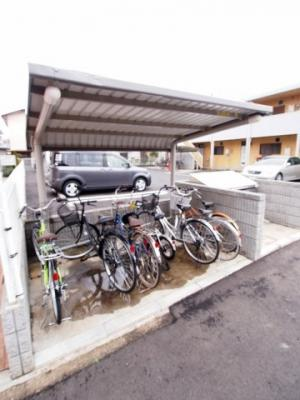 屋根付き駐輪場有り!
