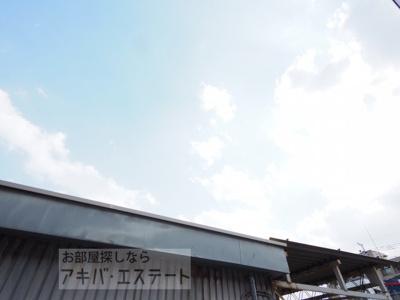 【展望】パフィオMS