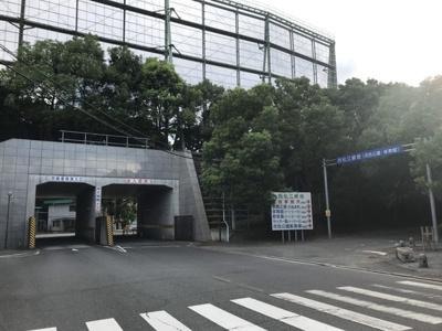 西松江緑地