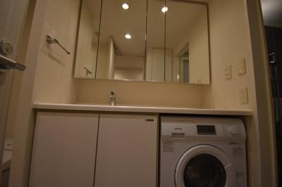 洗濯乾燥機がついた独立洗面台です。