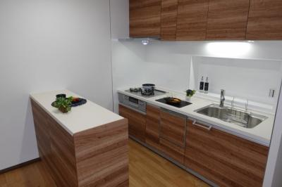 【家事快適設備!】 キッチンからリビングも見渡すことができ、 浄水器一体型ハンドシャワー水栓、 一度に5人分の食器が洗える食器洗い乾燥機、 カップボードも設置。 毎日の家事を快適にする設備が揃ってます