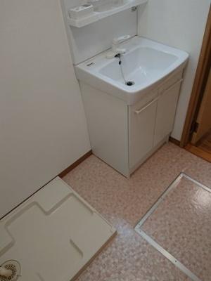 シャンプードレッサー、洗濯機置場