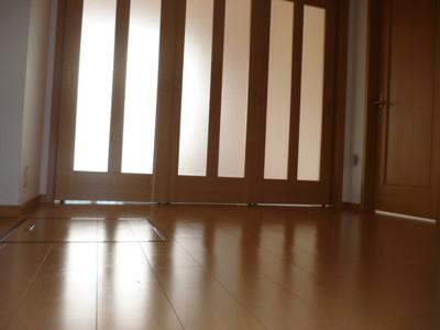 【洋室】オースピシャス プレイシスII