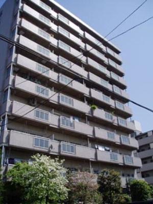 【外観】チェスターハウス川口