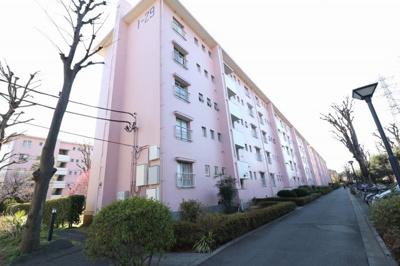 【外観】国立富士見台団地29号棟