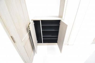 見えているのは下駄箱です。小さいと思われましたか?実は見えにくいですが右側にも縦長の収納があります。