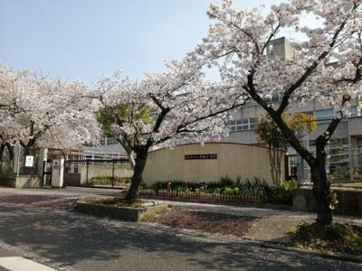 太田小学校徒歩9分(約710m)です。