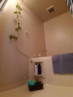【浴室】とき和コーポB棟