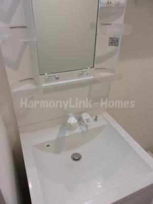 ハーモニーテラス柴又Ⅱの独立洗面台