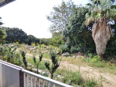 バルコニー正面は開けていて緑の目隠し有!緑の向こうは池になっています。
