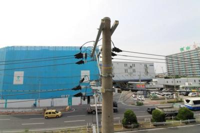 【展望】BLUE福島