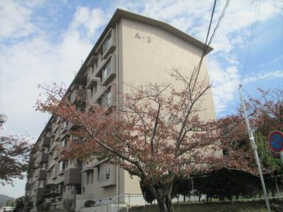 【外観】北須磨団地A3棟