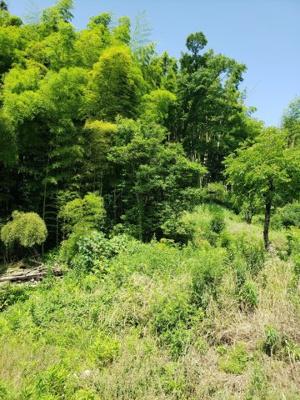 【和室】鳥取市東今在家古民家中古戸建