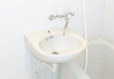 メゾン・ド・アデリⅡの洗面台