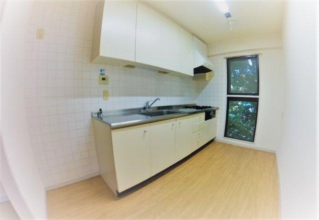 アイビーコート88 (2LDK) キッチン