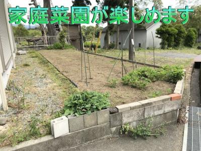 庭(家庭菜園が楽しめます)