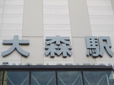 【周辺】大森フラワーマンション(賃貸中)
