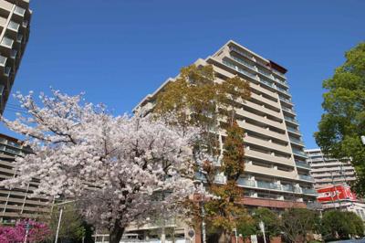 ☆大阪メトロ谷町線「都島」駅まで徒歩5分!!の駅近好立地です♪ ☆スーパーが近く毎日のお買い物が便利ですね♪ ☆周辺施設充実で生活至便な環境です♪