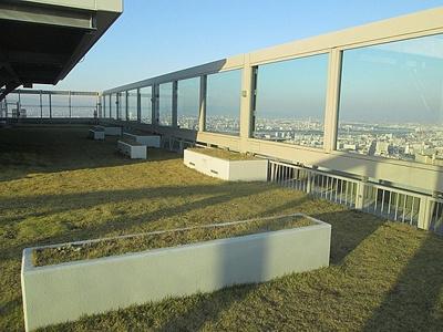 省エネ効果をもたらし環境に配慮した屋上緑化のオープンスペース(スカイガーデン)
