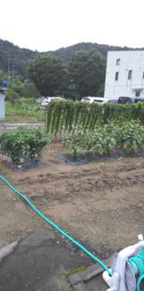 【区画図】55268 岐阜市日野西土地