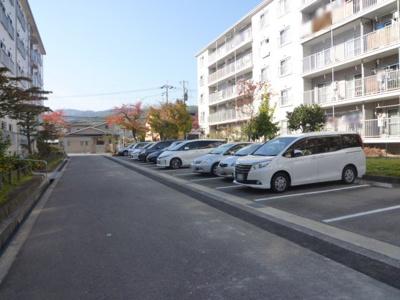 【駐車場】長岡天神ハイツ6棟