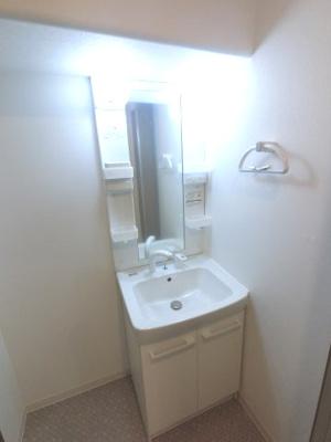 鏡横の棚や洗面台下収納があります。