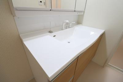 通常より洗面ボウルが大きく、洗面・洗髪などができる機能を備えた洗面化粧台