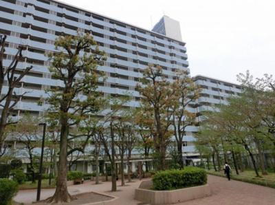 【外観】越中島三丁目ハイツ 14階 最上階 60.77㎡ リフォーム済