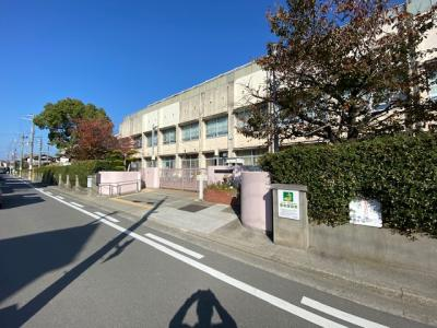浜寺昭和小学校