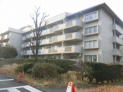 【外観】清新中央ハイツ8号棟
