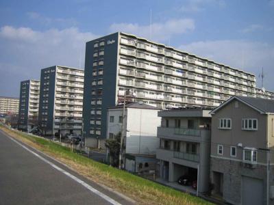 ◎大阪メトロ谷町線「太子橋今市」駅から徒歩8分!! ◎淀川河川敷からも近く、お子様を遊ばせたり、ウォーキングなどにも良いですね♪ ◎周辺施設充実で生活至便な環境ですよ♪