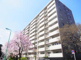 馬事公苑・用賀エリアの11階建てマンションです。