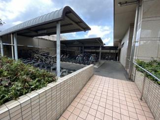 自転車置き場も屋根付できれいに管理されています