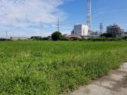 西条市港土地Bの画像