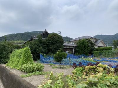 【外観】西条市実報寺土地