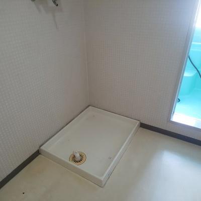 【洗面所】シャトレ―大磯 302