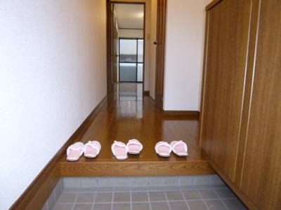 【玄関】ハイツコアラ