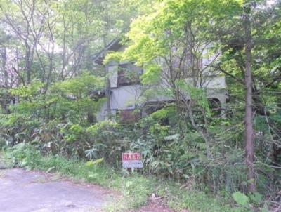 【外観】八幡平市松尾寄木第1地割・売地
