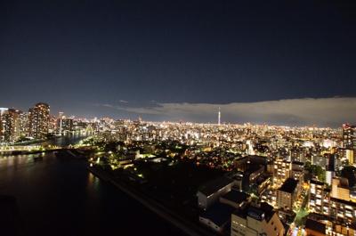 【展望】キャナルワーフタワーズ 34階 99.79㎡ 平成12年築