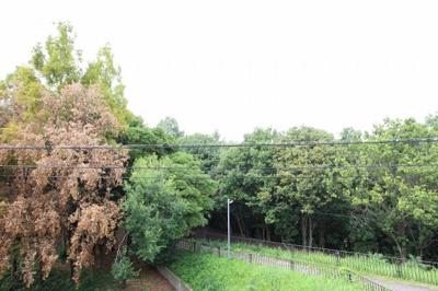 アベンヌの丘