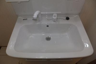 ひろびろとした陶器のボウルとシャワー水栓が嬉しいですね☆