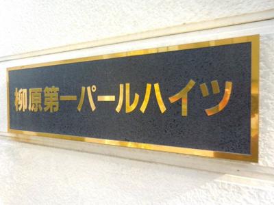 【外観】柳原第一パールハイツ