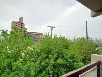 植栽の緑に癒されますね♪駅から徒歩6分という距離ですが、バルコニーから緑が見えるとほっとしますね♪
