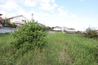 土地面積が広い分、設計もしやすいです。 大きな庭や駐車スペースを4台分とって建てている住宅もあります。
